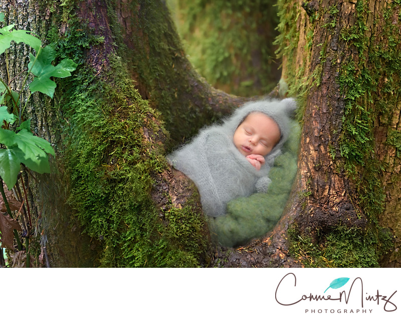 Outdoor Newborn Photo Portland Oregon