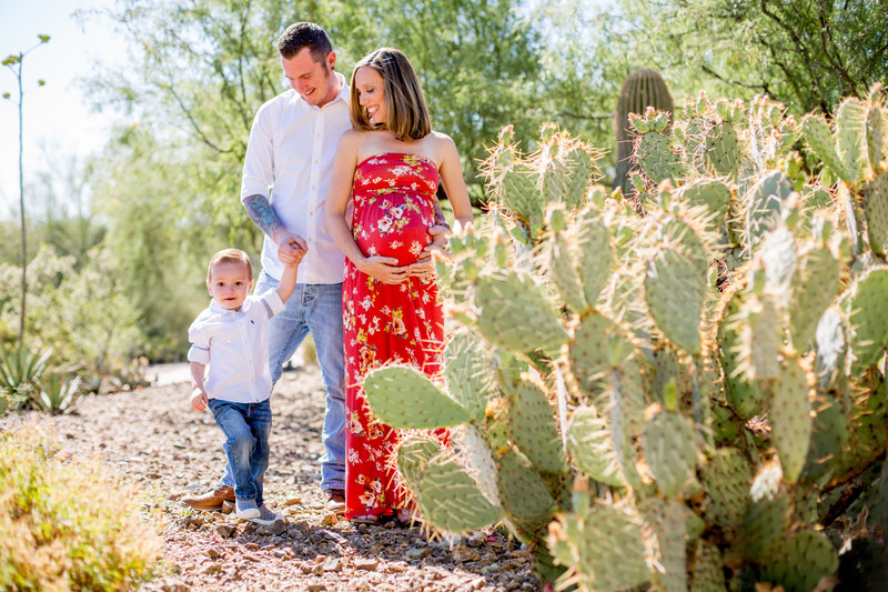 Maternity Family Portrait Session Phoenix Photographer