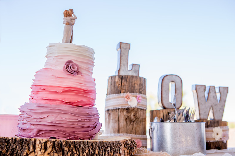 Ombre Cake Rustic Phoenix Wedding Photographer