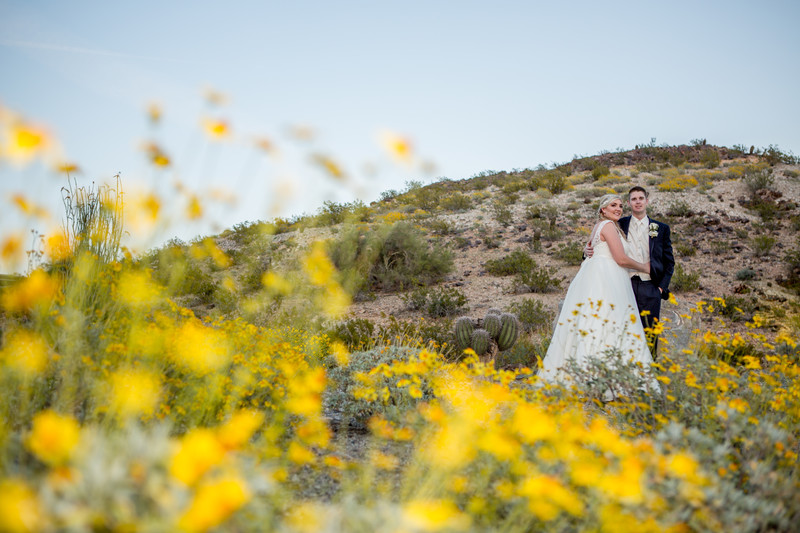 Field of flowers Phoenix Wedding Photographer