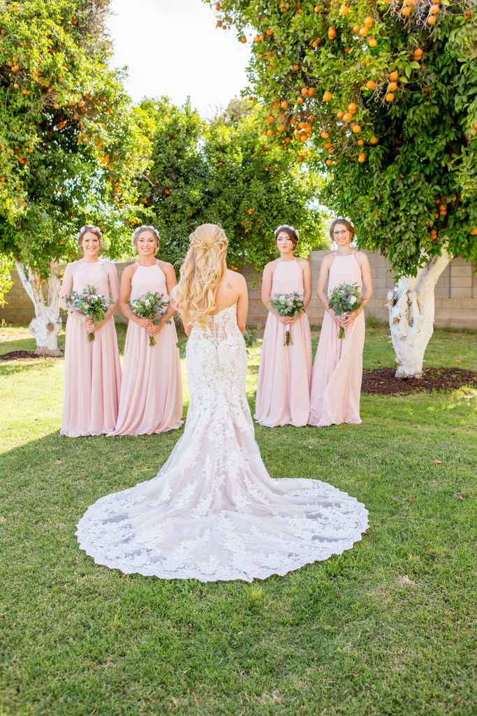 Lace Dress Orange Orchard Wedding Phoenix Photographer