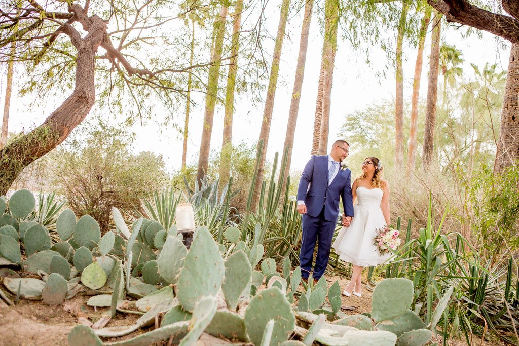 Cacti Desert Phoenix Wedding Photographer The Farm