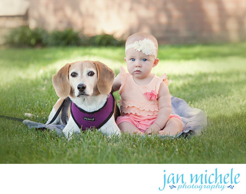 Old Town Alexandria Pet Photographer - Best Friends