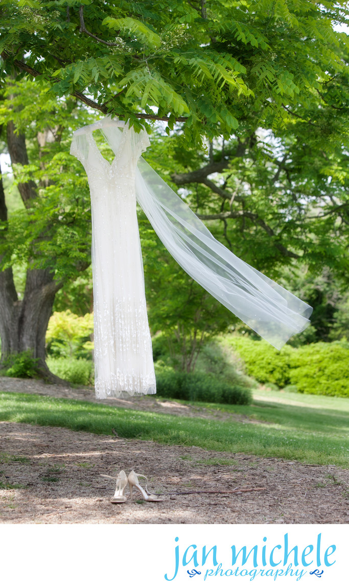 Wedding Gown hanging from a tree at River Farm