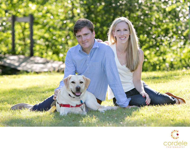 Dogs in Engagement Sessions Boston