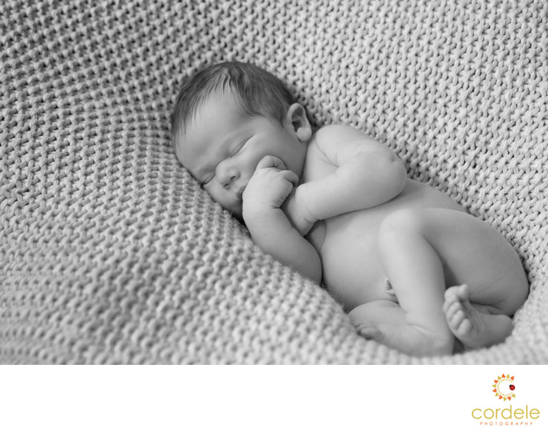 Lynnfield Newborn Photographer