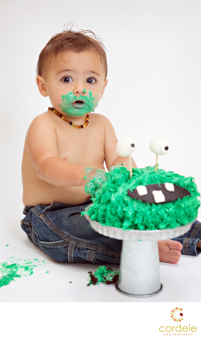 First Birthday Cake Smash Photographer North Reading Favorite