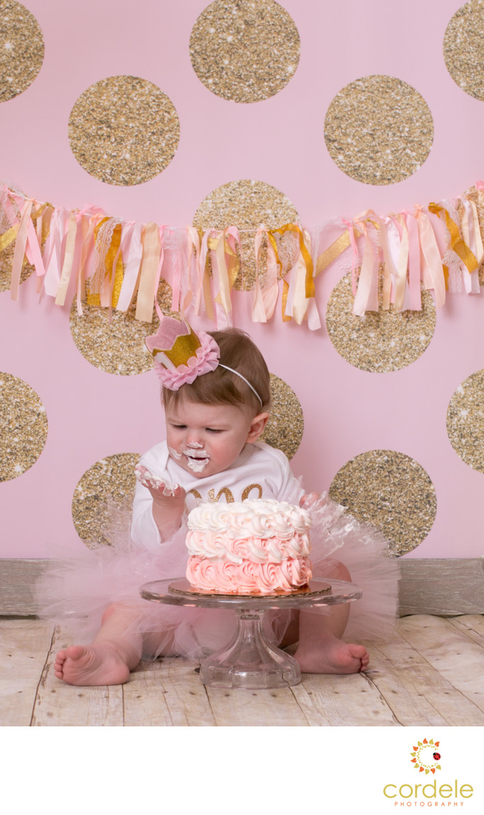 Pink and Gold Cake Smash Andover Massachusetts