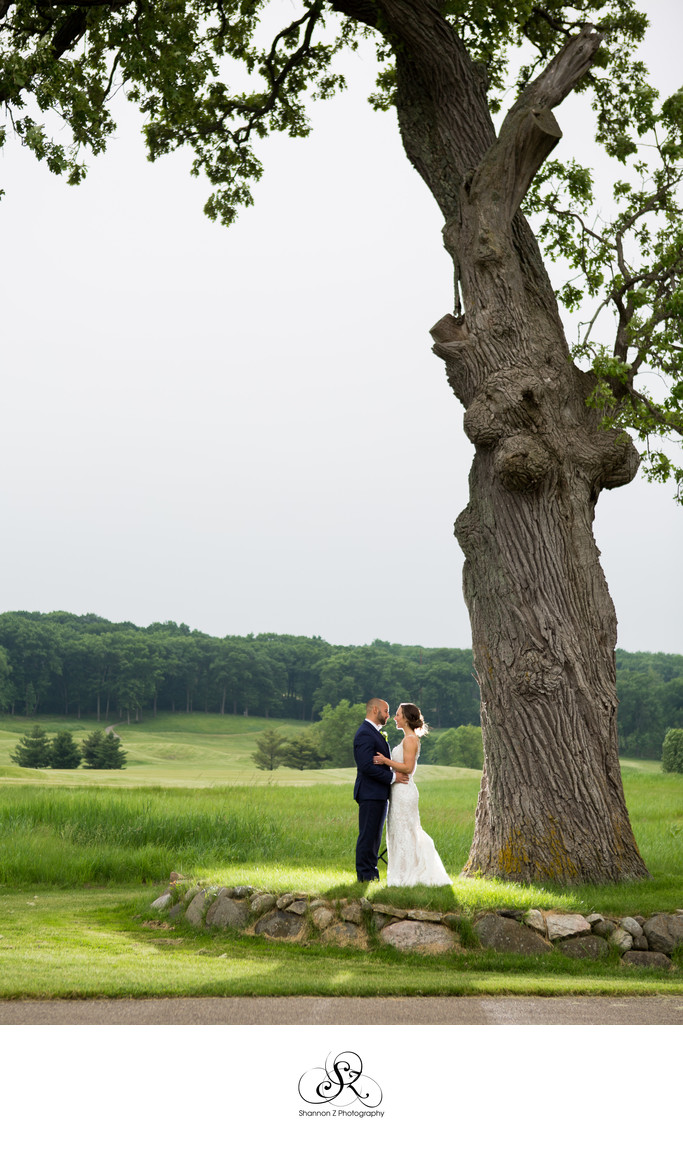 Old oak Tree: Wedding Day Photos