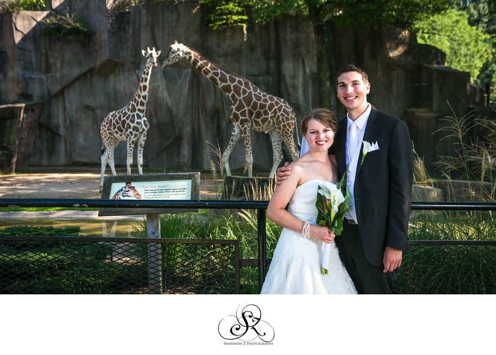 Giraffes at your Wedding: Milwaukee Zoo