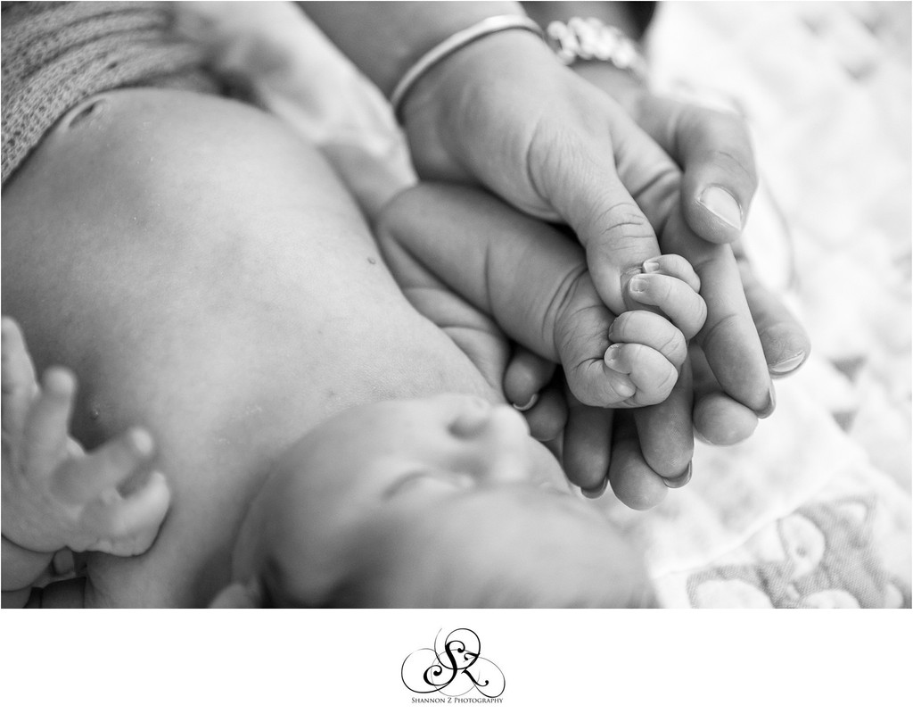 Three Hands: Newborn Photos