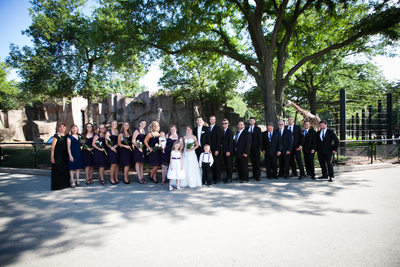 Giraffe Wedding: Wedding Party at Milwaukee Zoo