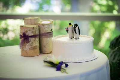 Penguin Cake: The Zoo Wedding