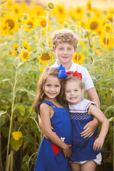 Sunflower Family: Photos in Sunflowers