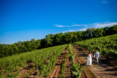 Sand Castle Winery Wedding Pictures