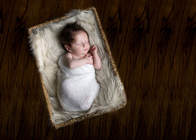 Long Island Newborn Photo