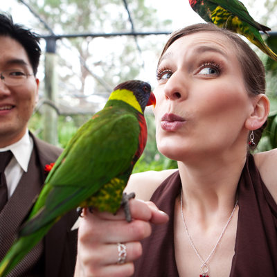 Wedding at the Brevard Zoo in Melbourne
