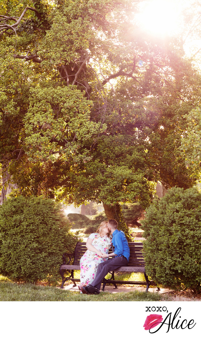 romance on the bench mom and dad maternity photography
