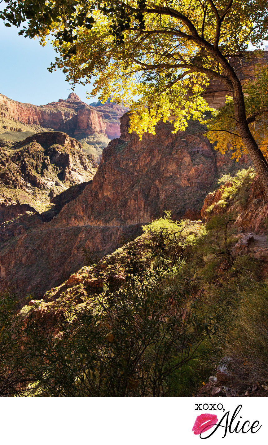 Indian Gardens in the Grand Canyon beautiful fall photo