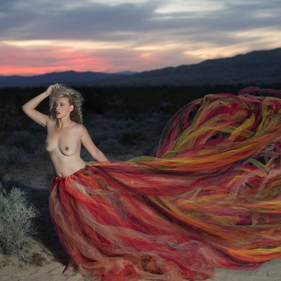 tulle skirt flows at sunset in the mojave desert