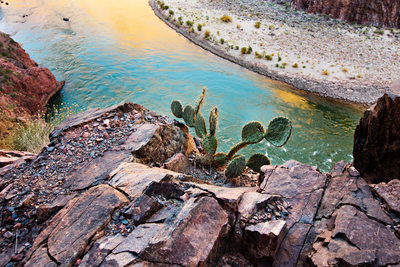 Colorado River from the Bright Angel Trail Grand Canyon