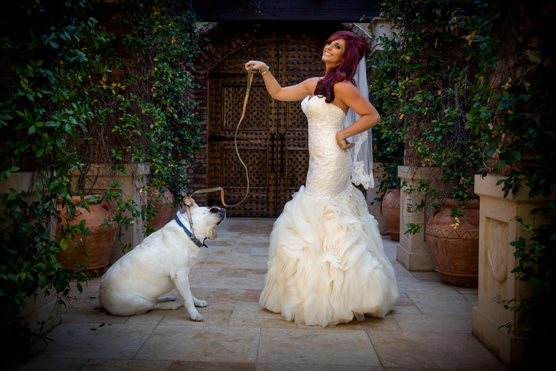 Bride with dog photo - wedding in Scottsdale