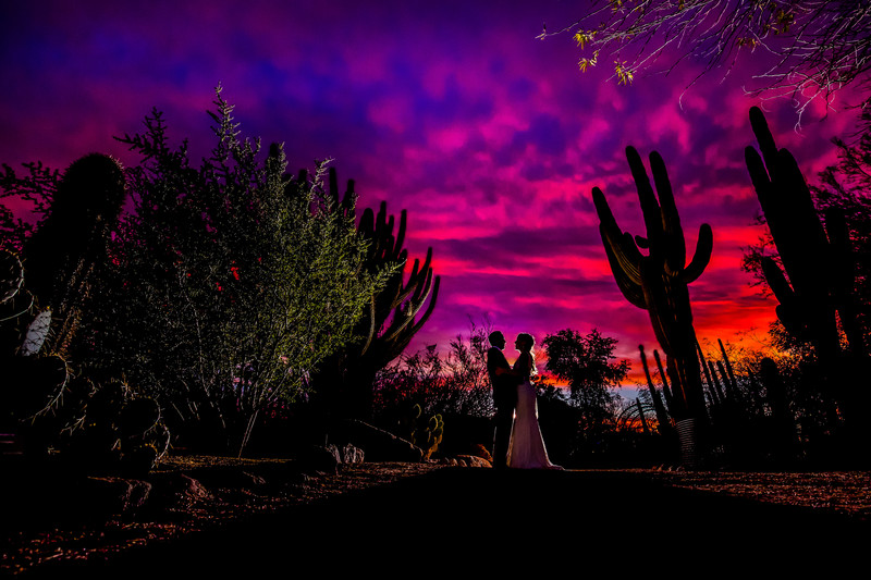 Desert botanical gardens wedding photography Phoenix