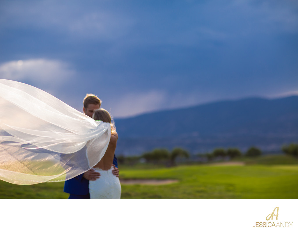 Kelowna Wedding Photographers - Veil, Dress and Bride