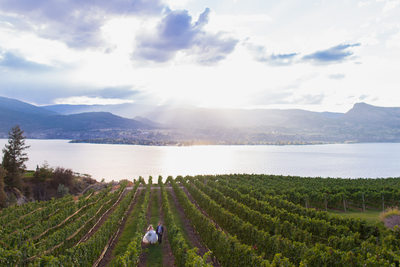 Kelowna Wedding Photographers - Vineyard by the Lake