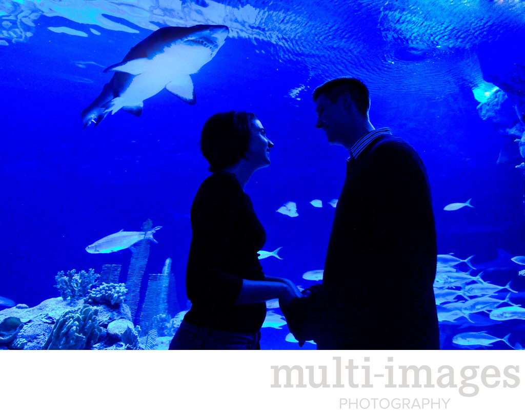 Henry Doorly Zoo Engagement