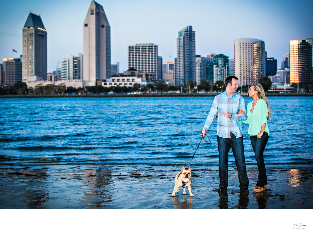 Centennial park and San Diego Skyline Picture