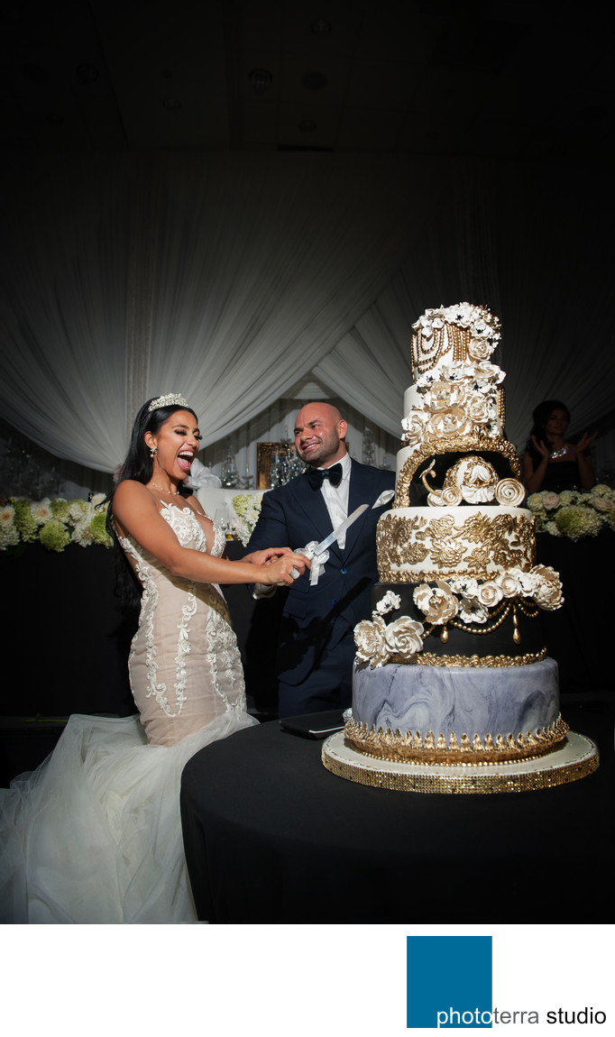 Black and White Wedding Cake Cutting