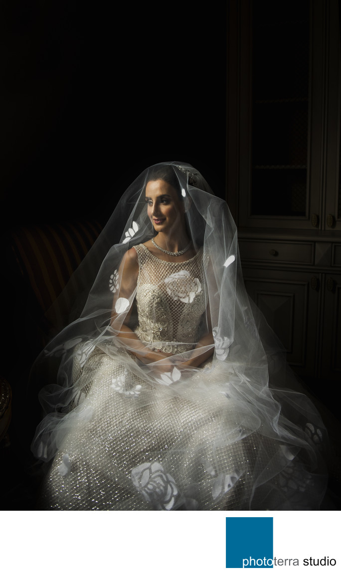 Fine Art Bridal Portrait