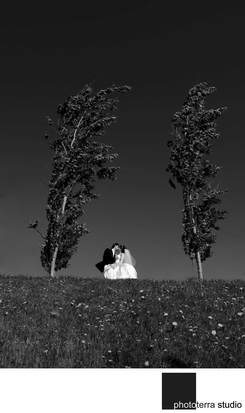 Black & White Wedding Landscape