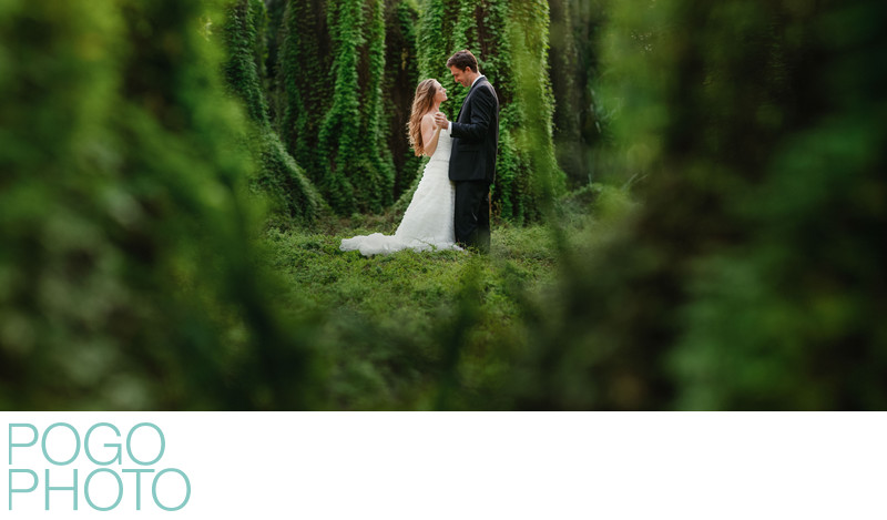 Post Wedding Portraits in Natural Florida Greenery
