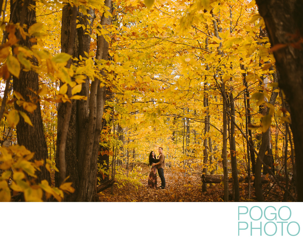 Romantic yellow foliage portraits in Vermont