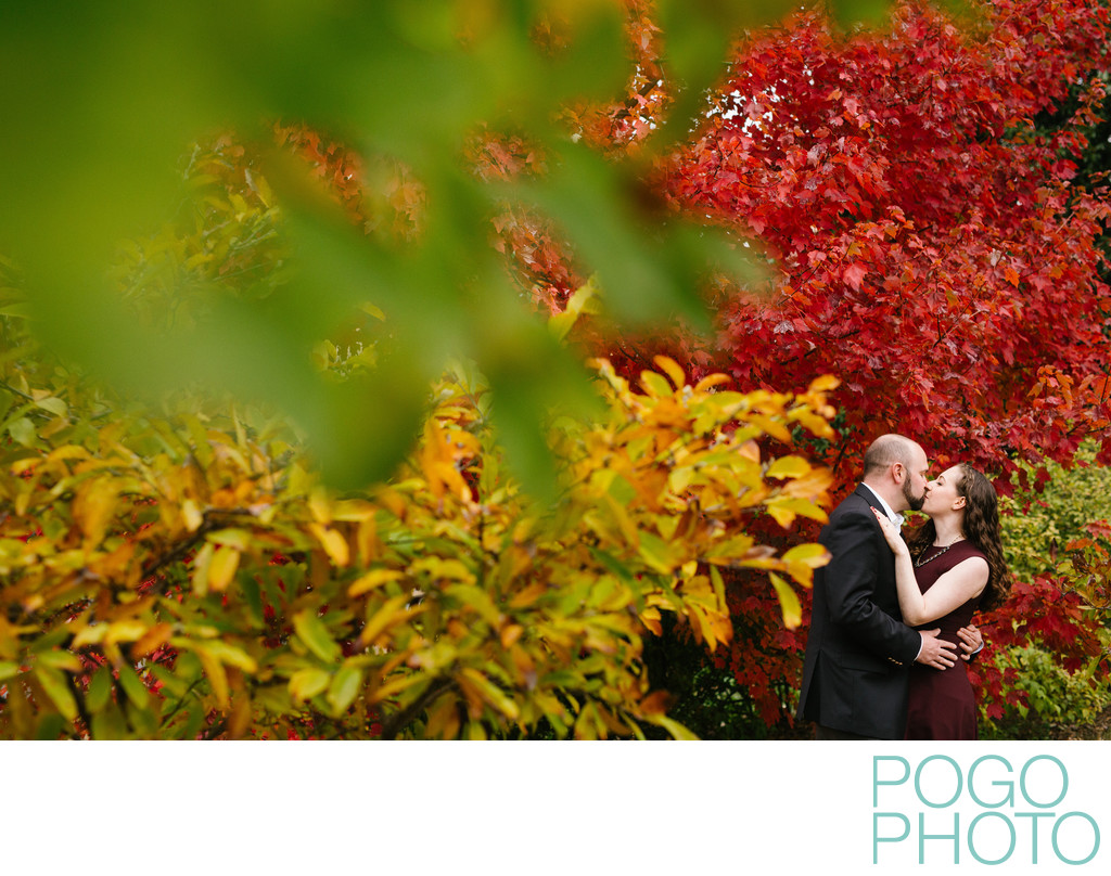 Southern Vermont Fall Foliage Engagement Session