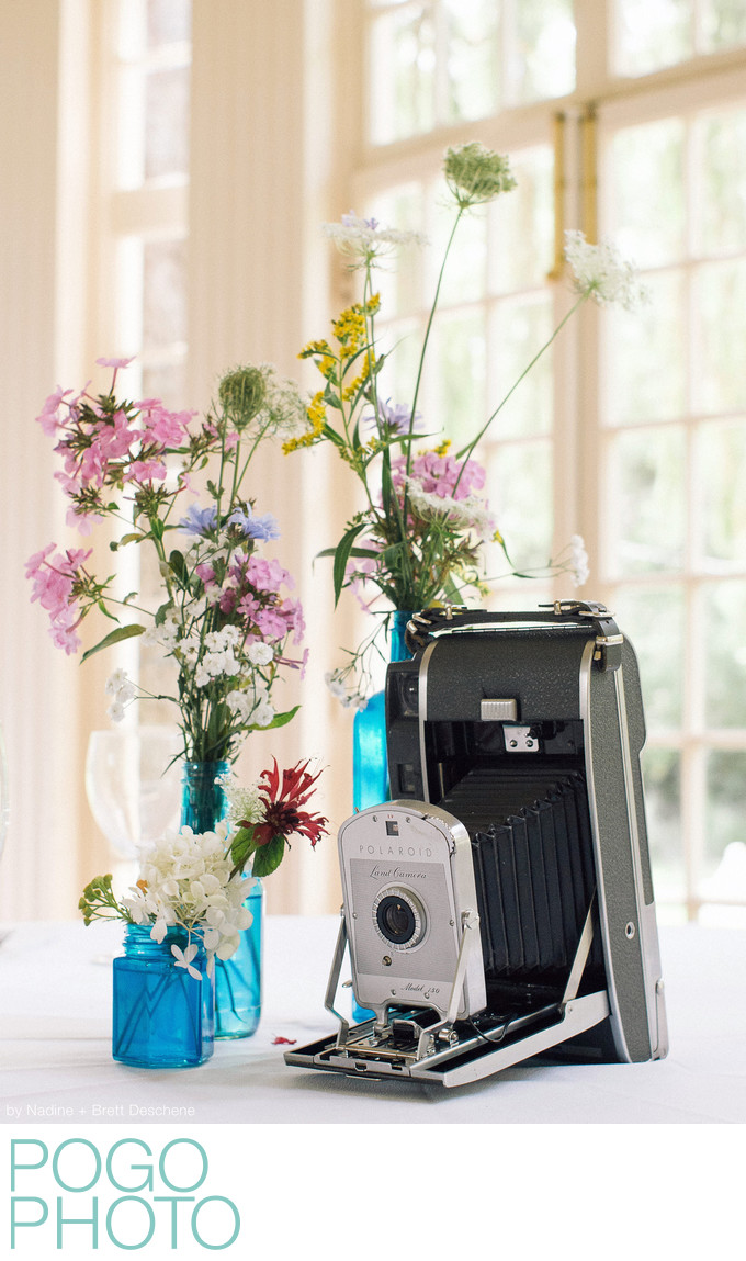 The Pogo Wedding: wildflowers and antique cameras