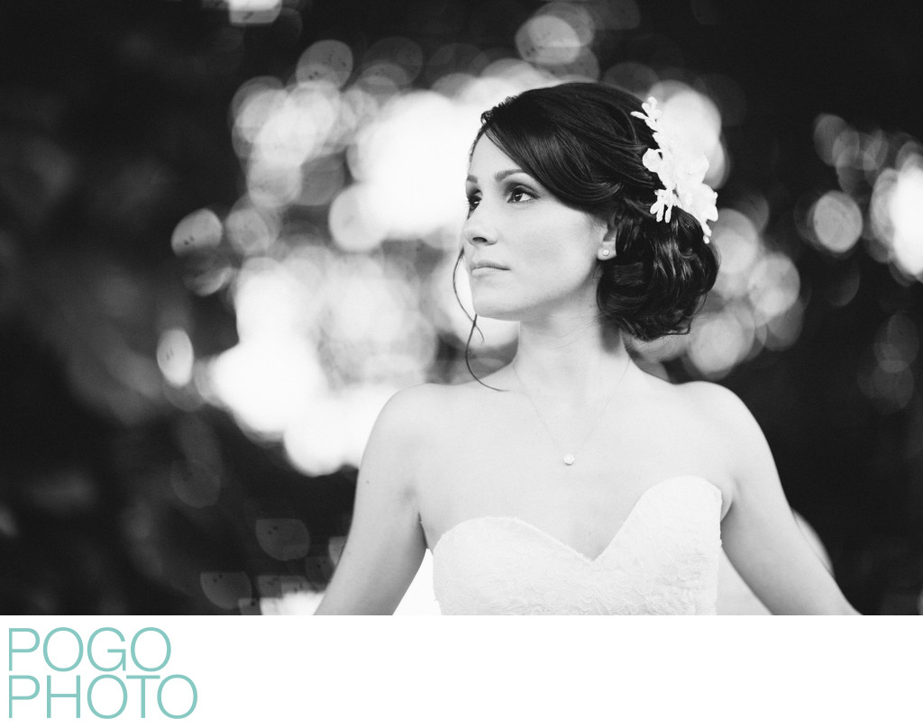 Timeless Black and White Bridal Portrait at The Addison