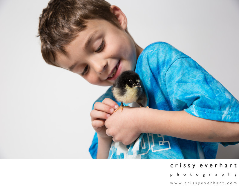Seven year old boy with baby chicken