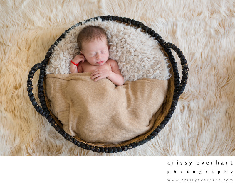 Paoli Newborn Photographer - Studio Portraits