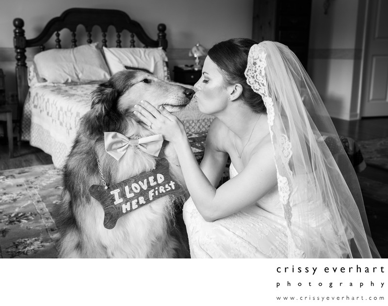 Bride Kissing Dog with