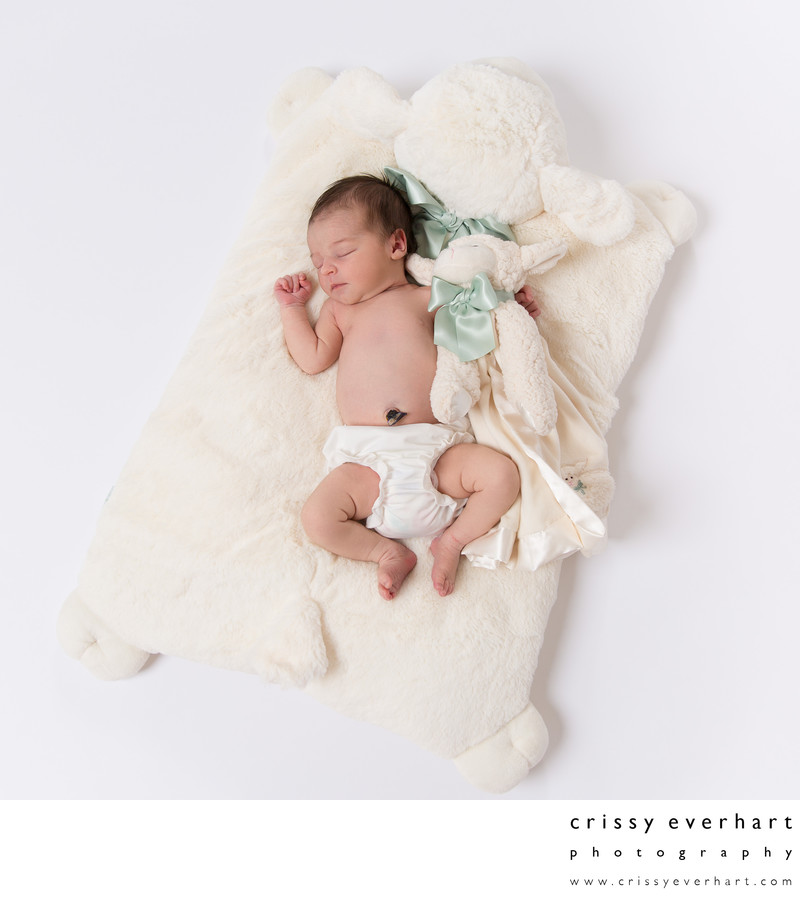 Sleeping Baby on Stuffed Lamb Blanket