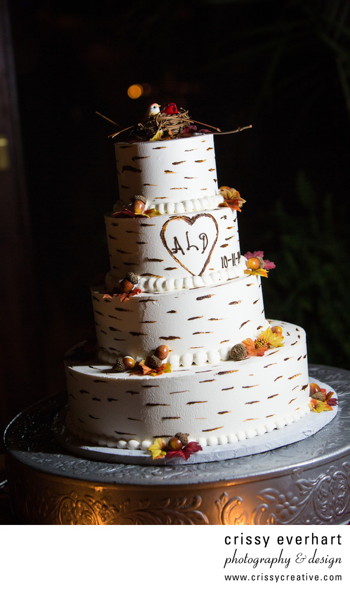 Lovebirds wedding cake - Wedding Photography Details