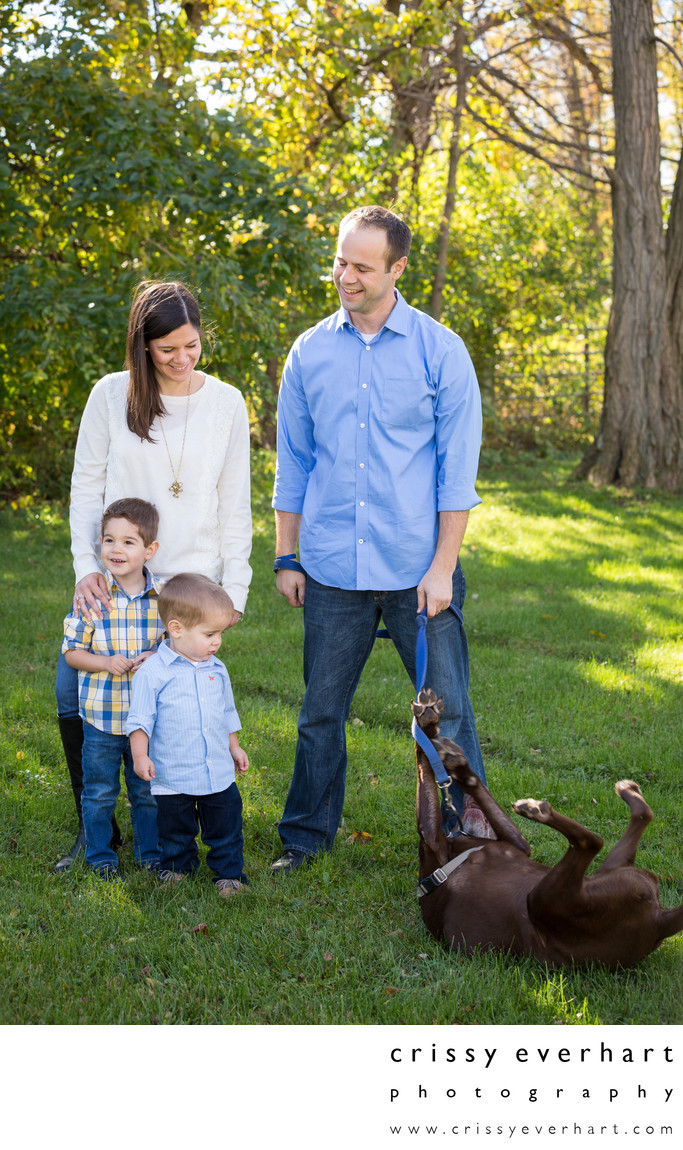Family Portraits with Dogs - Not Always Easy!