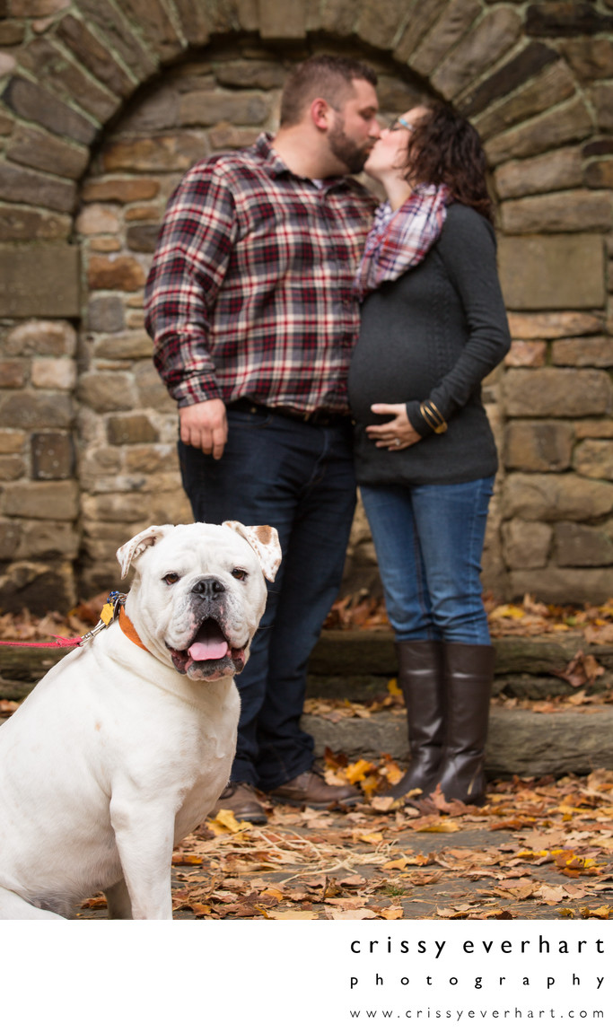 Maternity Session with Dog - Pet Photographer