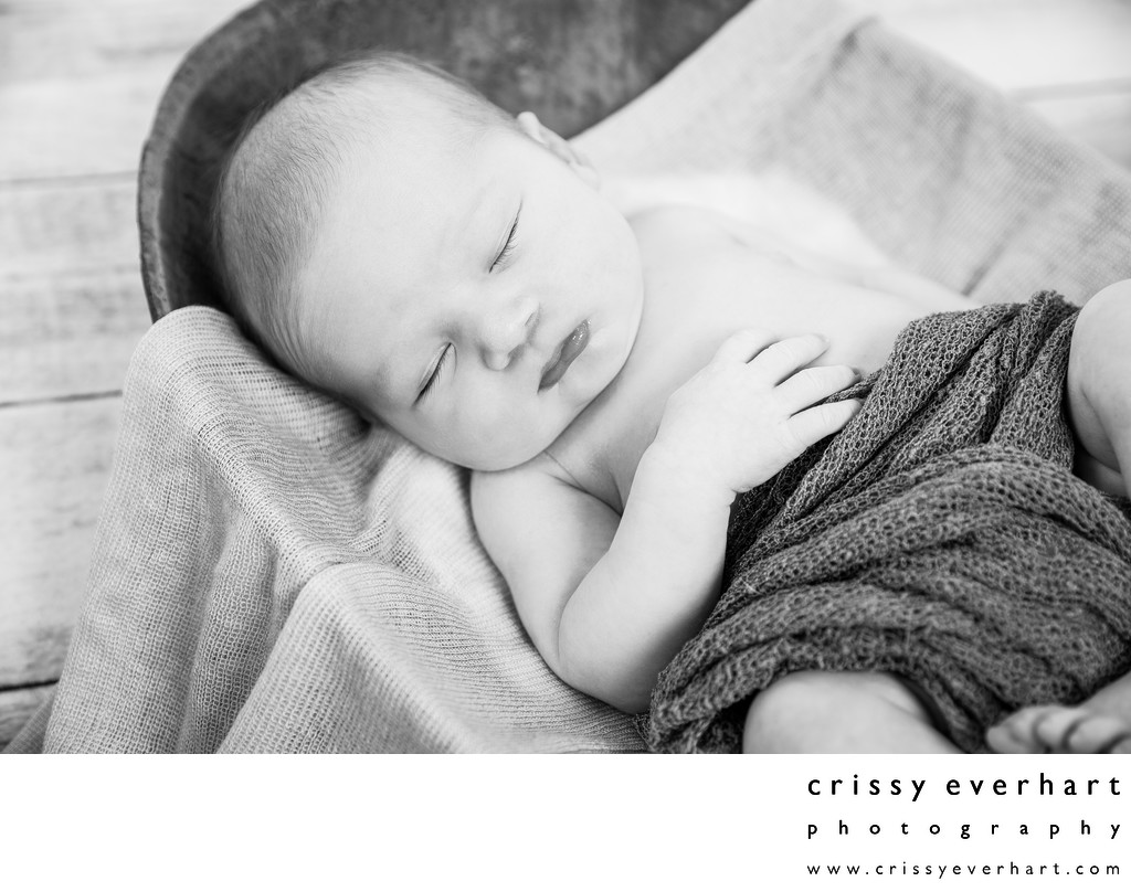 Sleeping Newborn Photos - Portrait Studio