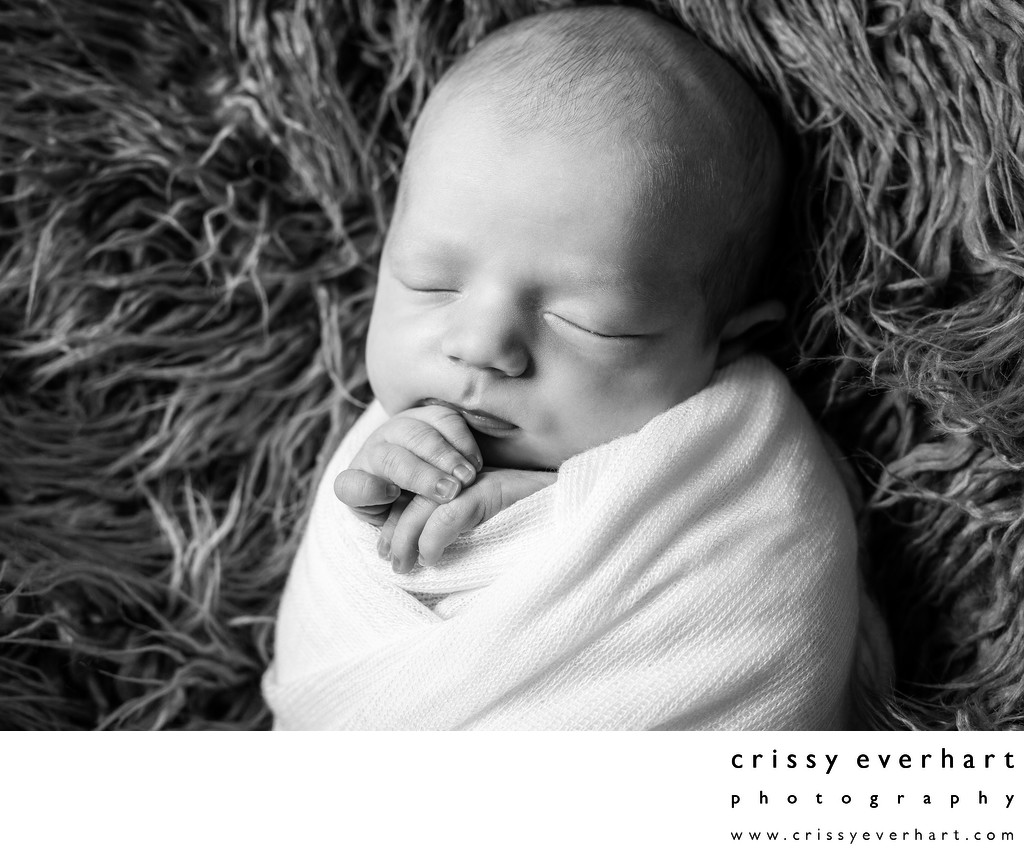 Sleeping Baby Newborn Portrait Studio