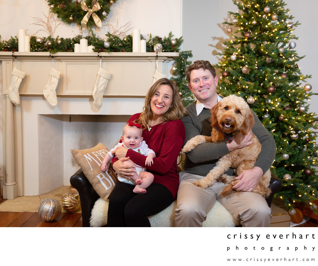 Pet-Friendly Holiday Photos in Chester County