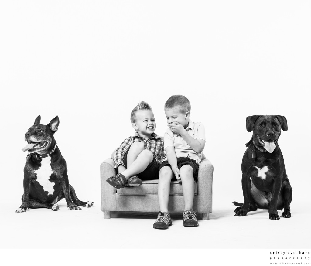 Giggling Brothers with Dogs